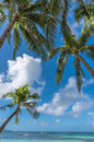 Tropical beach background from Boracay island with coconut palms Royalty Free Stock Photo