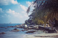 Tropical beach background with palm trees. Vintage effect. Koh Samui Royalty Free Stock Photo