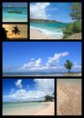Tropical beach collage Stock Images