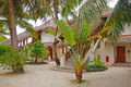 Tropical beach cottage with plenty of trees offering warm weather and tranquil environment Stock Images