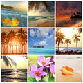 Tropical beach and details collage Stock Photography