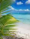 Tropical beach in Dominican republic. Caribbean sea. island Saon Stock Photo