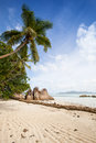 Tropical beach with granite rocks coconut palm and exotic trees blue sky and turquoise sea seychelles la digue Stock Images