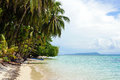 Tropical beach island with a boat leaning coconut tree and caribbean sea zapatillas keys panama Stock Photography