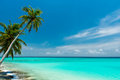 Tropical beach on the maldives Stock Photography