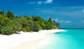 Tropical beach on the maldives Stock Image