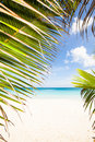Tropical beach with palm leaf travel background turquoise sea and blue sky Royalty Free Stock Photos