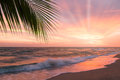Tropical beach with palm tree at beautiful sunset nature background Stock Photo