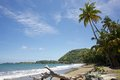 The tropical beach at prince s bay near roxborough tobago Royalty Free Stock Photography