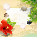 Tropical Beach with Red Hibiscus Royalty Free Stock Photo