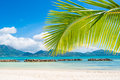 Tropical beach resort seychelles island saint anne Royalty Free Stock Photography