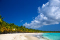 Tropical beach in saona island caribbean sea dominican republic Stock Photography