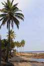 Tropical beach in sauipe coast bahia state brazil Stock Photos