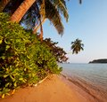 Tropical beach on sri lanka Royalty Free Stock Photos