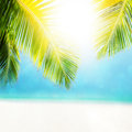 Tropical beach in sunny day colorful abstract composition of the defocused with bokeh effect Stock Images