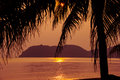 Tropical beach at sunset. Nature background Royalty Free Stock Photo
