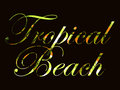 Tropical beach. Text with curls of palm leaves. Beautiful writing on a black background. Vector Royalty Free Stock Photo