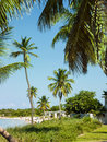 Tropical beach white sand with palm trees and cabanas on bahai honda key in florida Stock Photography