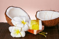 Tropical and beauty close up coconuts flowers soap Stock Image
