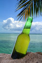 Tropical Beer Royalty Free Stock Photo