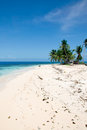 Tropical Belize Island Stock Image