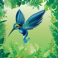 Tropical bird with blue and green plumage Royalty Free Stock Images