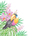 Tropical bird and flowers watercolor background with Stock Photography