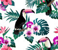 Tropical birds, orchids and palm leaves seamless background. Royalty Free Stock Photo