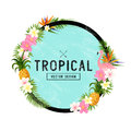 Tropical Border Design Royalty Free Stock Photo