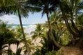 Tropical Brazilian Beach Stock Photos