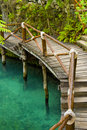 Tropical bridge Stock Photography