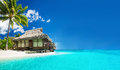 Tropical bungallow on the amazing beach with palm tree a Stock Images