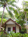 Tropical bungalow among palm trees vegetation and tall Royalty Free Stock Photography
