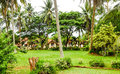 Tropical bungalows among palm trees and greenery Stock Photography