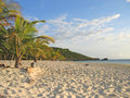 Tropical caraibe beach Royalty Free Stock Image