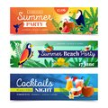 Tropical Cocktail Beach Party Banners Set Royalty Free Stock Photo