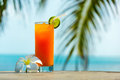 Tropical cocktail Royalty Free Stock Photo