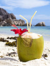 Tropical Coconut Drink at the Beach on La Digue island Royalty Free Stock Photo