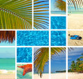 Tropical collage. Royalty Free Stock Photos