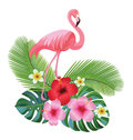 Tropical composition and flamingo. Vector illustration.