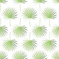 Green palm leaves endless pattern isolated on white background. Seamless illustration with tropical element.