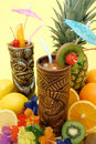 Tropical Drinks and Fruits Royalty Free Stock Photo