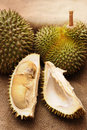 Tropical Durian fruit Royalty Free Stock Photo