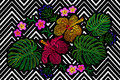 Tropical embroidery flower arrangement. Exotic plant blossom summer jungle. Fashion print textile patch. Hawaii hibiscus plumeria Royalty Free Stock Photo
