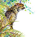 Tropical exotic forest, green leaves, wildlife, cheetah, watercolor illustration. watercolor background unusual exotic nature