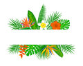 Tropical exotic leaves and flowers plants background.