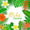 Tropical exotic leaves and flowers plants frame background