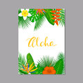 Tropical exotic leaves and flowers plants vertical border frame background