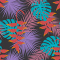 Tropical exotic palm mostera leaves heliconia hanging flower art seamless pattern.