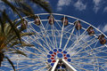 Tropical Ferris Wheel Royalty Free Stock Image